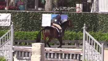 Equestrian Sport Productions